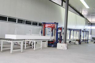 Automatic Continuous EPS Cutting Line